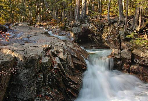 Pemigewasset at the Basin by Deanne Fortnam