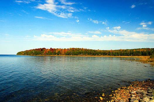Peninsula Shore in Fall by Dawn Richards