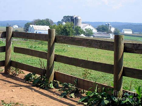 Pennsylvania Farm by Marlene Robbins