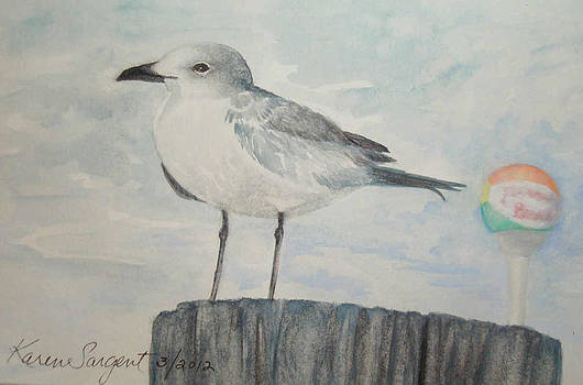Pensacola Beach Bird by Karan Sargent