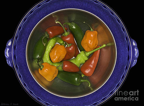 Warren Sarle - Peppers ProPhoto RGB