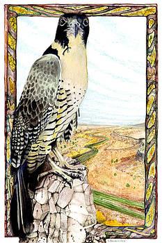 Peregrine Falcon by A Leon Miler