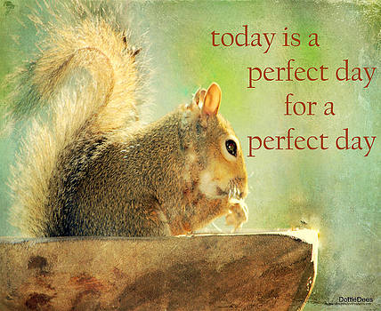 Perfect Day by Dottie Dees