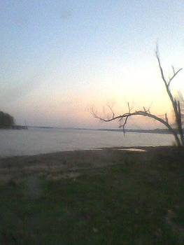 Perfect Peace at Pickwick by Dorothy S Guinn