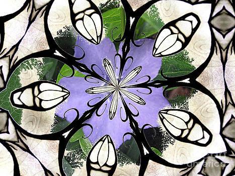 Periwinkle Hybrid by Shana Blake