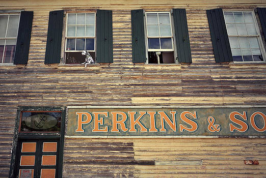 Perkins and Son and Friend by James Rasmusson