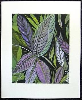 Persian Shield by Melonie King