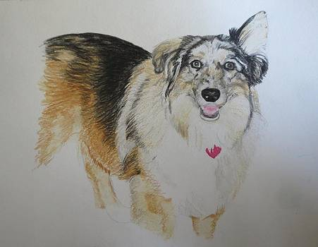 Pet Portrait Collie Watercolor Memorail 18 x 24 inch by Pigatopia by Shannon Ivins