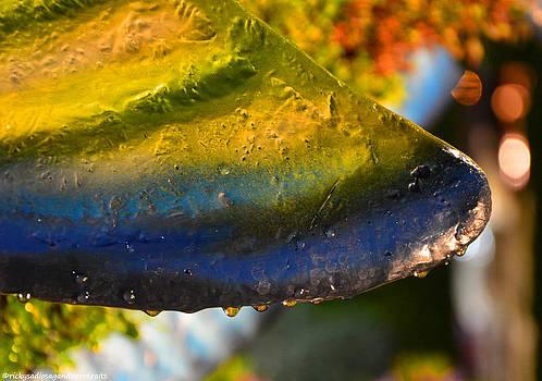 Petal Droplets by Enrique Rueda