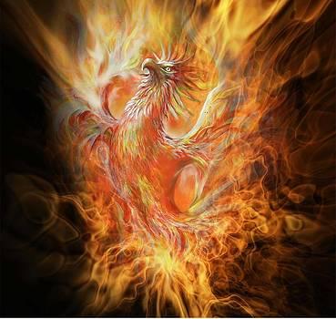 Phoenix by Penny Golledge