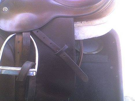 Photo Of Close Contact Saddle by Michael  Dillon