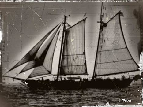 Photos In An Attic - Clipper by Leslie Revels