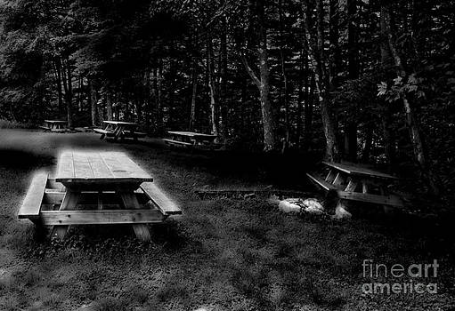 Picnic Area Black and White by Denise Jenks