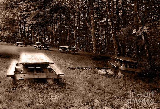 Picnic Area by Denise Jenks