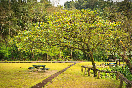 Picnic table in the forest by Kobchai Sukruean