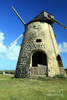 Sophie Vigneault - Picturesque Sugar Cane Mill