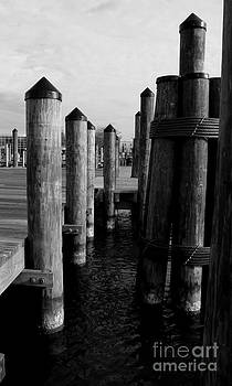 Pier Side by Angela DiPietro