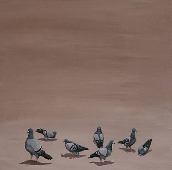 Pigeons by Jennifer Lynch