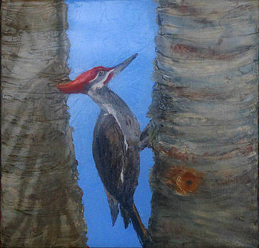 Pileated Woodpecker by Libby  Cagle