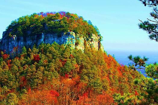 Pilot Mountain by Bob Whitt