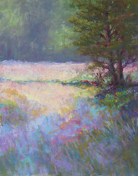 Pine Shadows by Marsha Savage