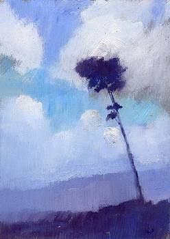 Pine tree against the Morning Sky by Alan Daysh