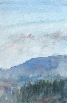 Pine trees at Twilight by Alan Daysh