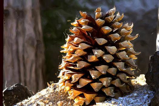 Gilbert Artiaga - The Pine Cone.