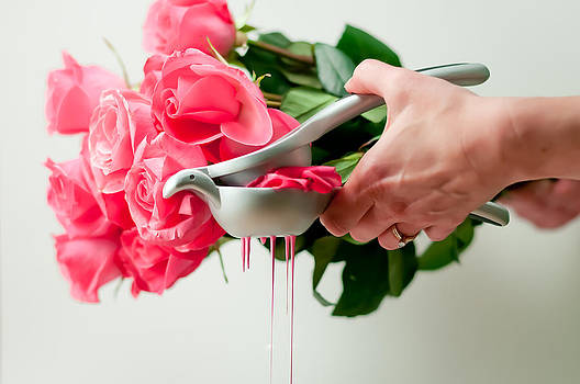 Pink by Brian Bonham