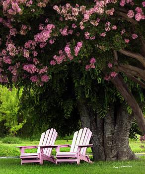 Maureen Cunningham - Pink Chairs