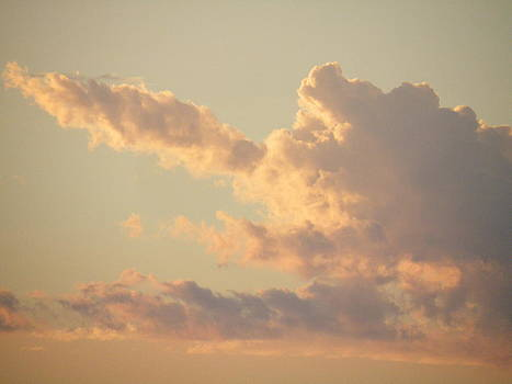 Pink Clouds at Sunset by Claire Plowman