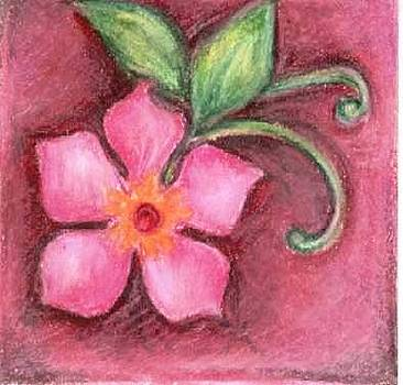 Pink Flower by Judith Correa