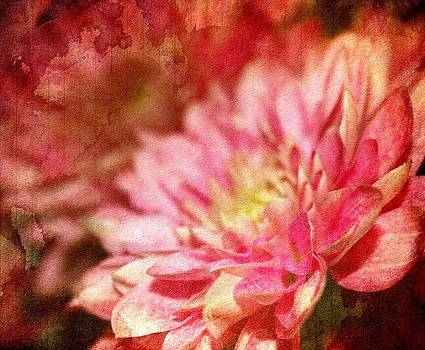 Pink Gem by Cathie Tyler