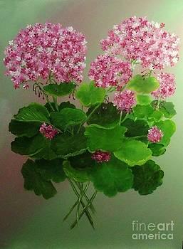 Peggy Miller - Pink Geranium