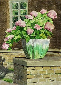 Pink Hydrangeas by Mark McKain