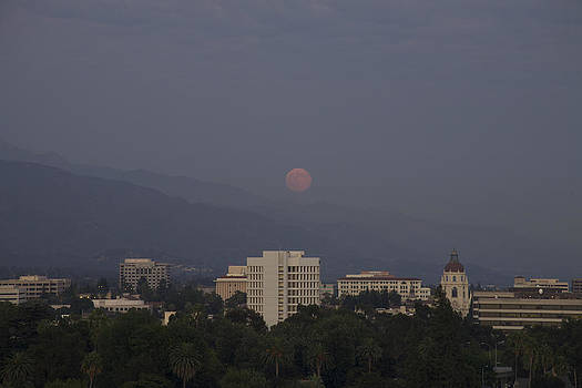 Pink Moon Over Pasadena by Ann Marie Donahue