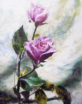 Pink Petals by Jill Brabant