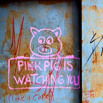 Pink Pig is Watching you. Like I care. by Ferry Ten Brink