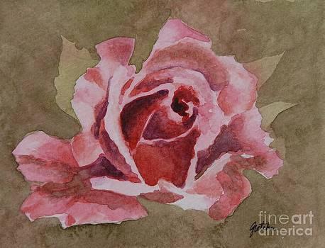 Pink Rose by Gretchen Bjornson