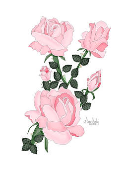 Pink Roses on a Friday Morning by Anne V Norskog