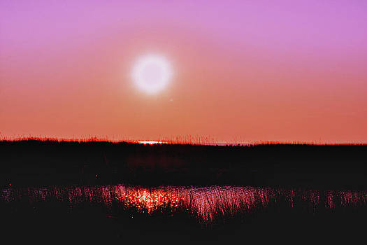 Pink Sky Over the Marsh by Kelly Reber