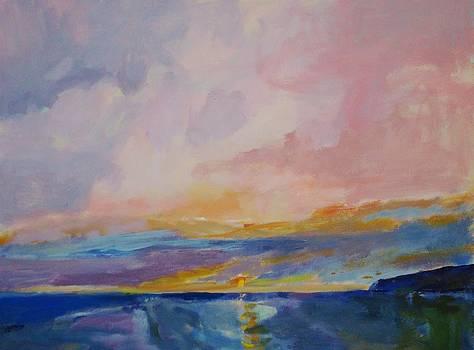 Pink Solstice by Jim Noel