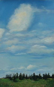 Pioneer Clouds  by Marie-Claire Dole