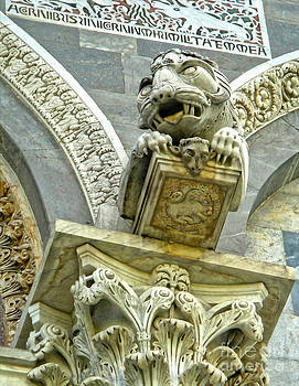 Gregory Dyer - Pisa Italy Cathedral Gargoyle