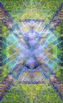 PiVortexSpheres in ChaliCell Garden of Light by Christopher Pringer