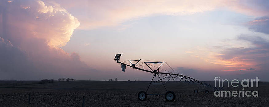 Art Whitton - Pivot Irrigation and Sunset