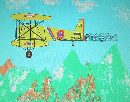 Plane by Paul Rapa