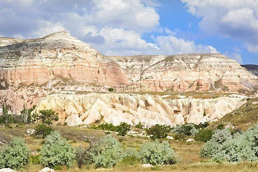 Kantilal Patel - Plateau Lava Ash