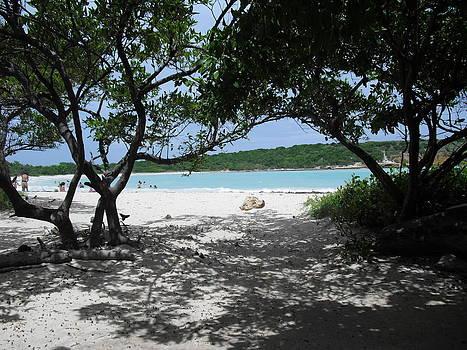 Playa Sucia by Melissa Torres