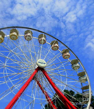 Playland Ferris Wheel by Maria Scarfone